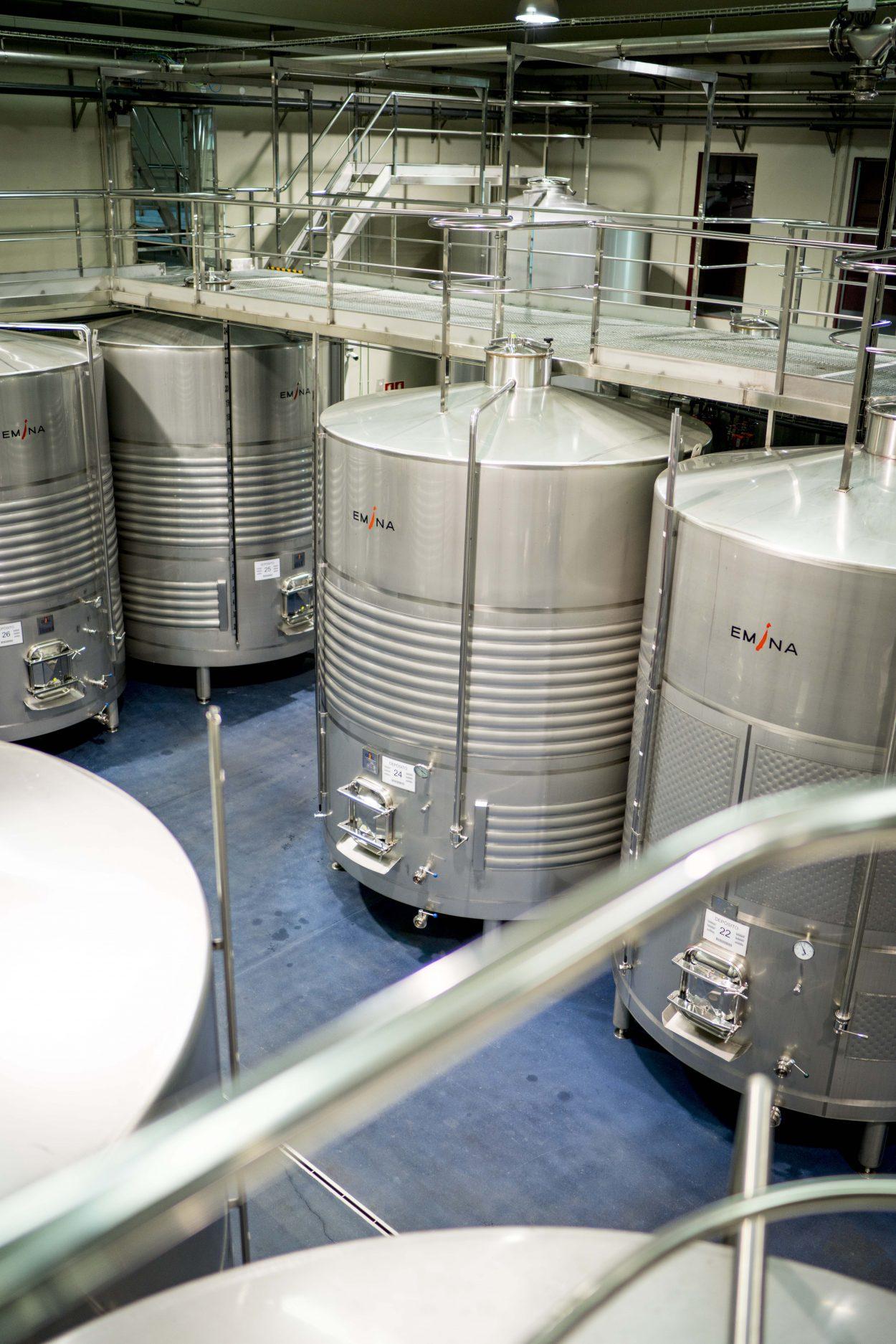 fermentar vino
