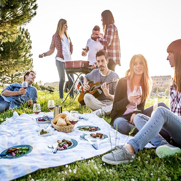picnic con vino ecológico